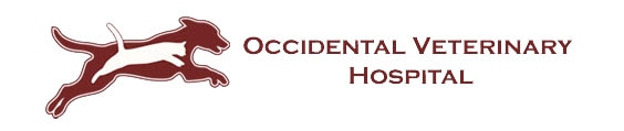 Occidental Veterinary Hospital in Occidental California